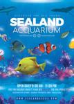 Aquarium Sea Land Flyer by n2n44
