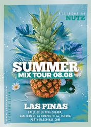 Summer Mix tour flyer by n2n44