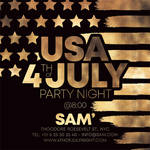 Usa 4th Of july Celebration Classy Party Flyer by n2n44