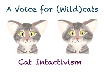 A Voice For (Wild)cats by MrBig2