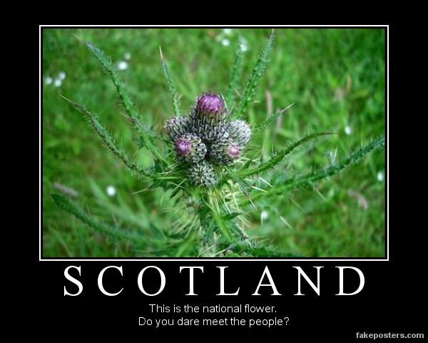 Scotland by fredrickburn