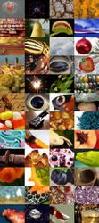 POTD collage v3 by Aviul