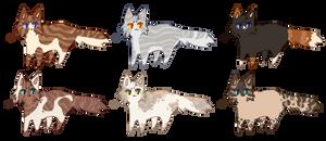 [3/6 OPEN] Kitty adopts