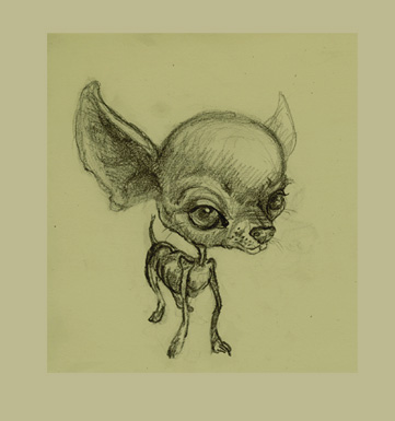 Chihuahua by cre8anim8