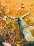 Moose Follow