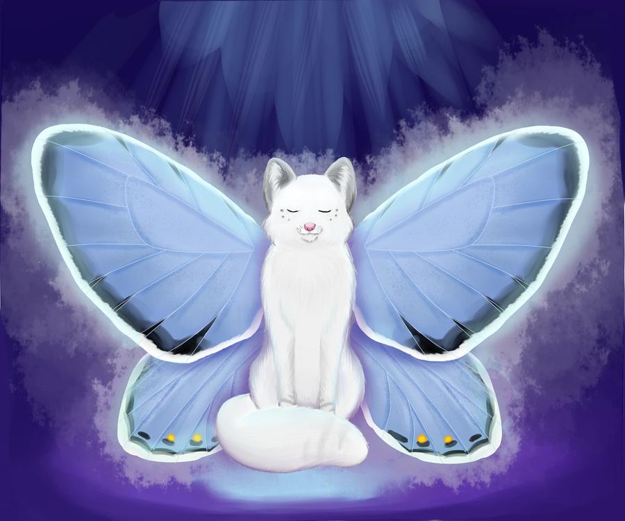 Butterfly by Koceta