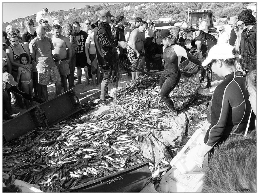 Fisherman 10 by Jack-Nobre