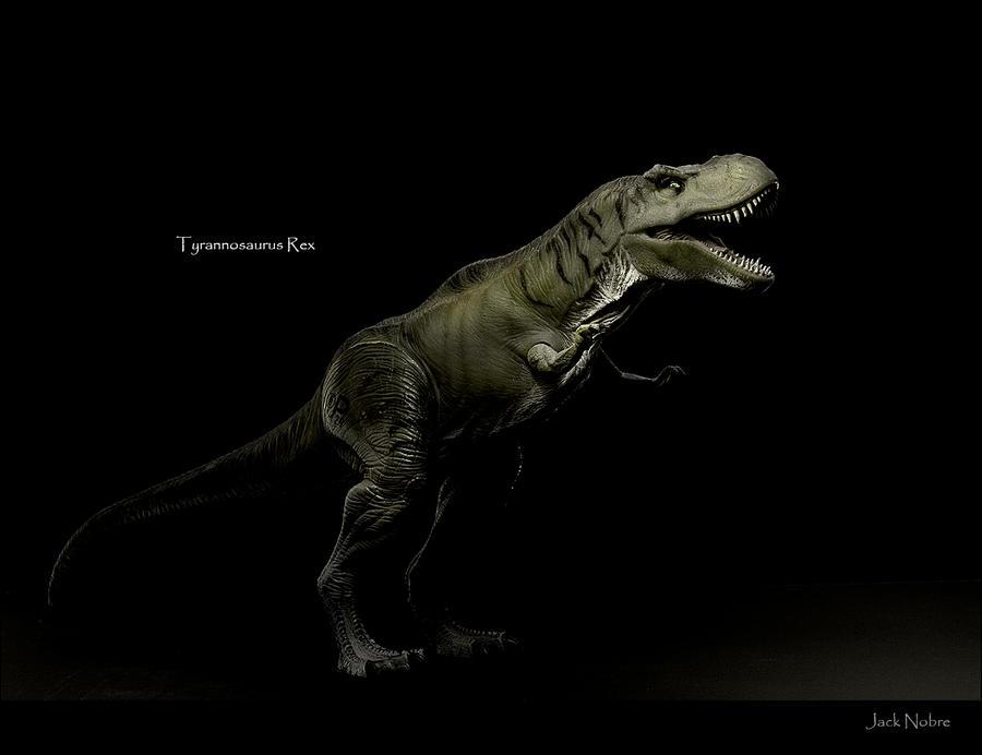 Tyrannosaurus Rex by Jack-Nobre