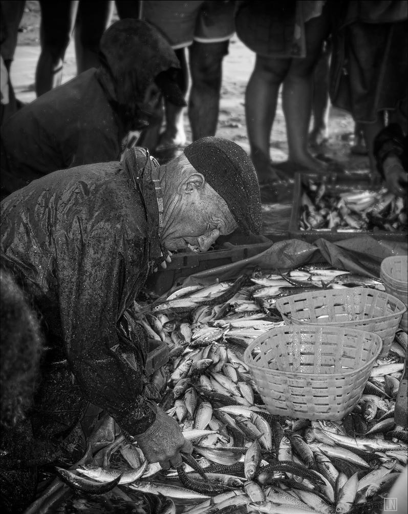 Fisherman's bounty by Jack-Nobre