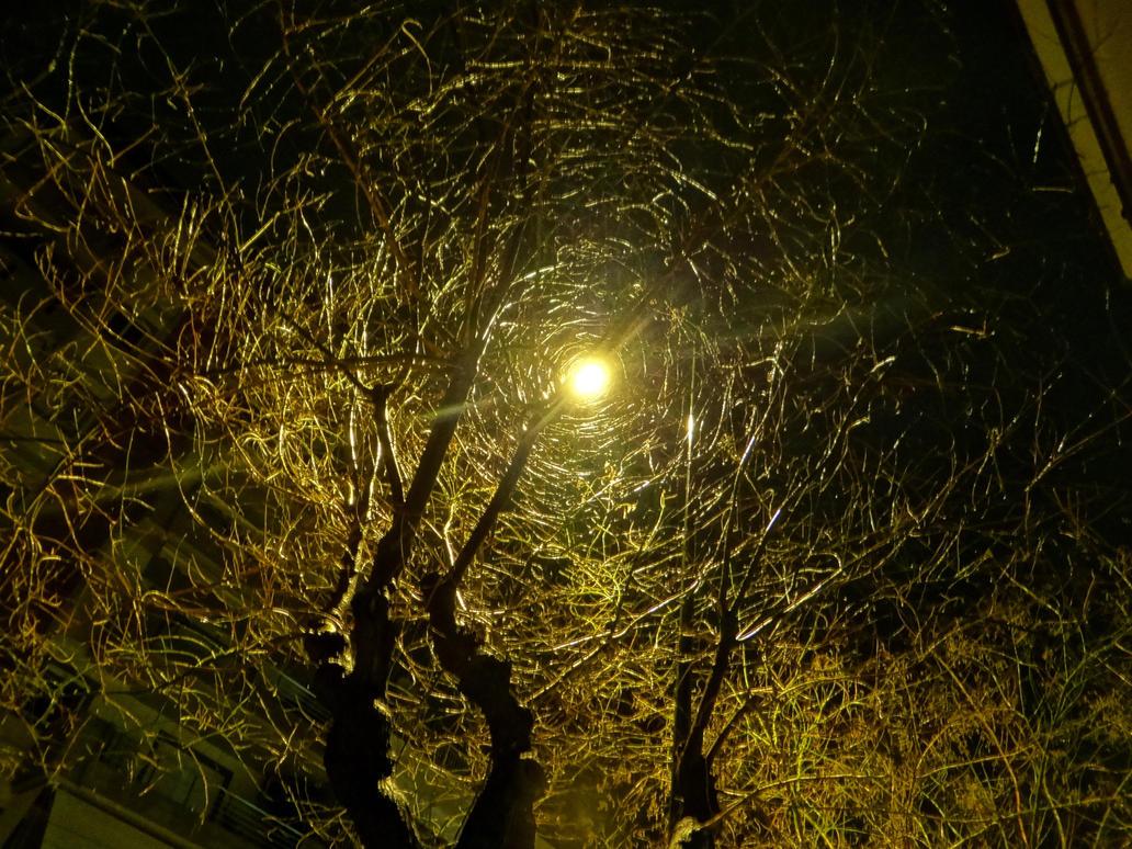 sreet light by BL00DYSunflowers