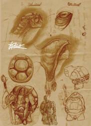 Turtle Hermit Concept by Mr-Goblin