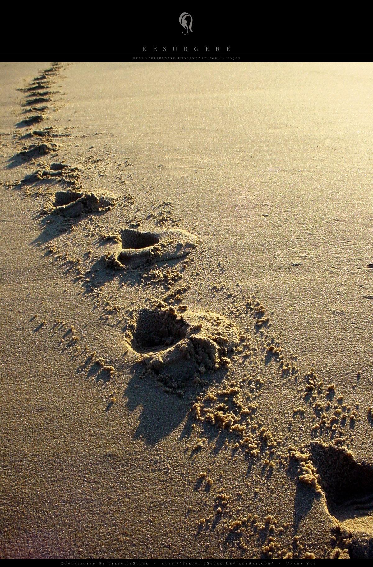 Photo - Sand - 1208