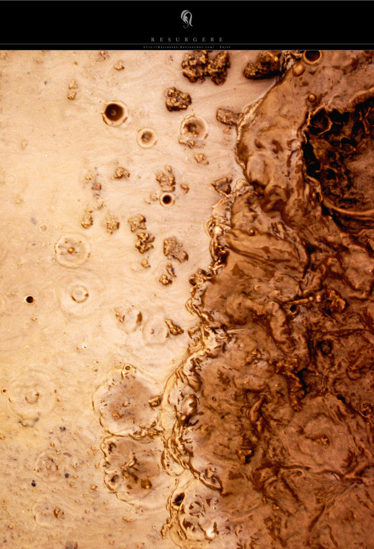 Photo - Mud - 4715 by resurgere
