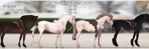 Mixed horse adopt auction OPEN by ZeeTheYeet