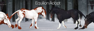 Equilion Adopt pack auction  OPEN by ZeeTheYeet