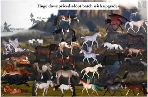 Huge DOWNPRICED adopt batch + upgrades 28/28 OPEN by ZeeTheYeet