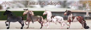 Fantastic adopt set price OPEN by ZeeTheYeet