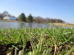 Across the Lake by WhiteBleedingFox