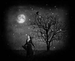 Halloween night magic by photofairy