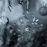 snowflake monochrome by photofairy
