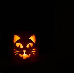 Kitty Lantern by photofairy