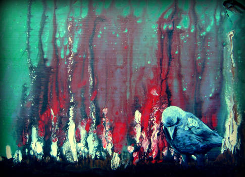Praying Raven