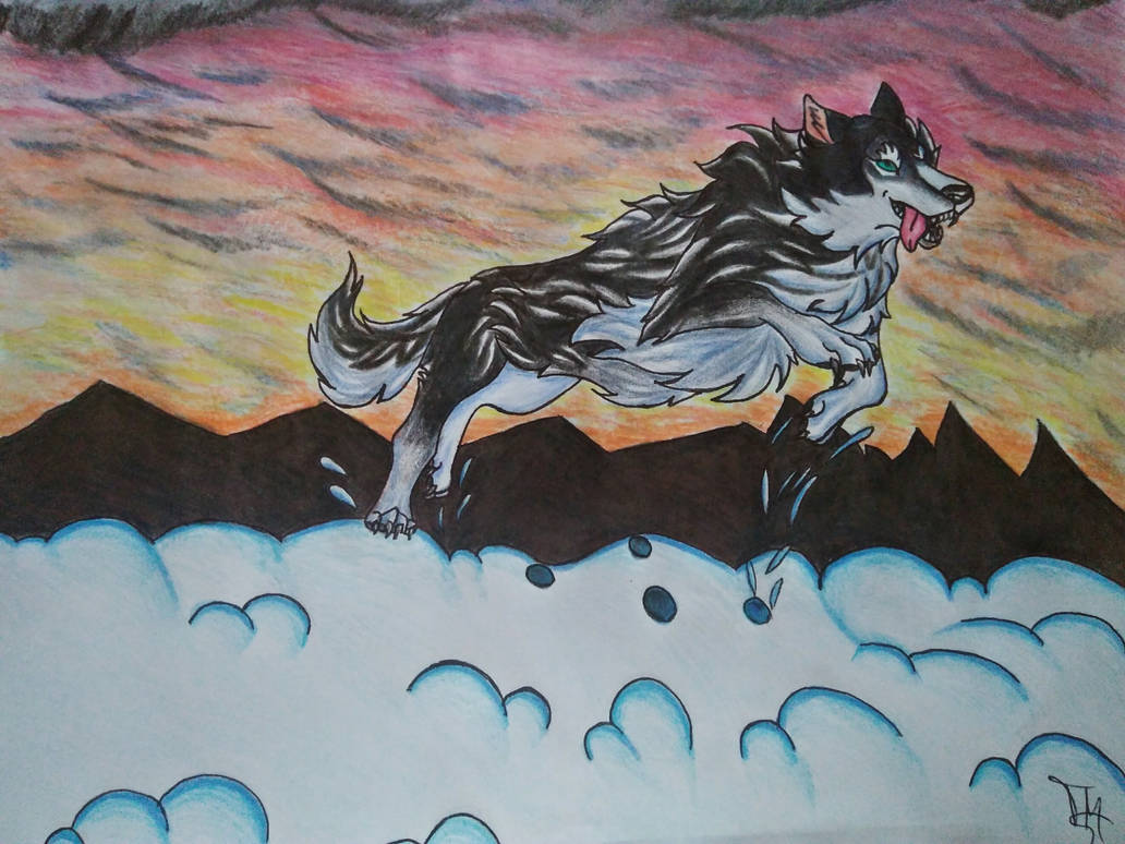 Wolf Running by Efrodite