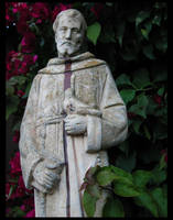 francis in the garden by soma