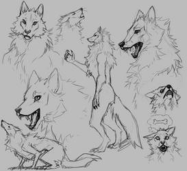 Werewolf doodles by Overlord-Jinral