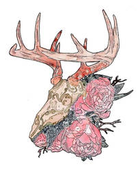 Stag X Peonies