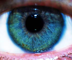 Eye macro by willos2
