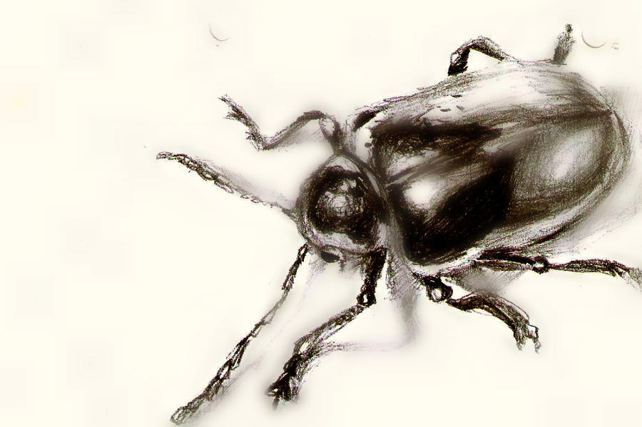 Bug me by yoothatikiyong