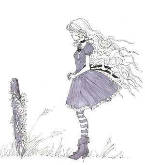 Ivy -  Grave