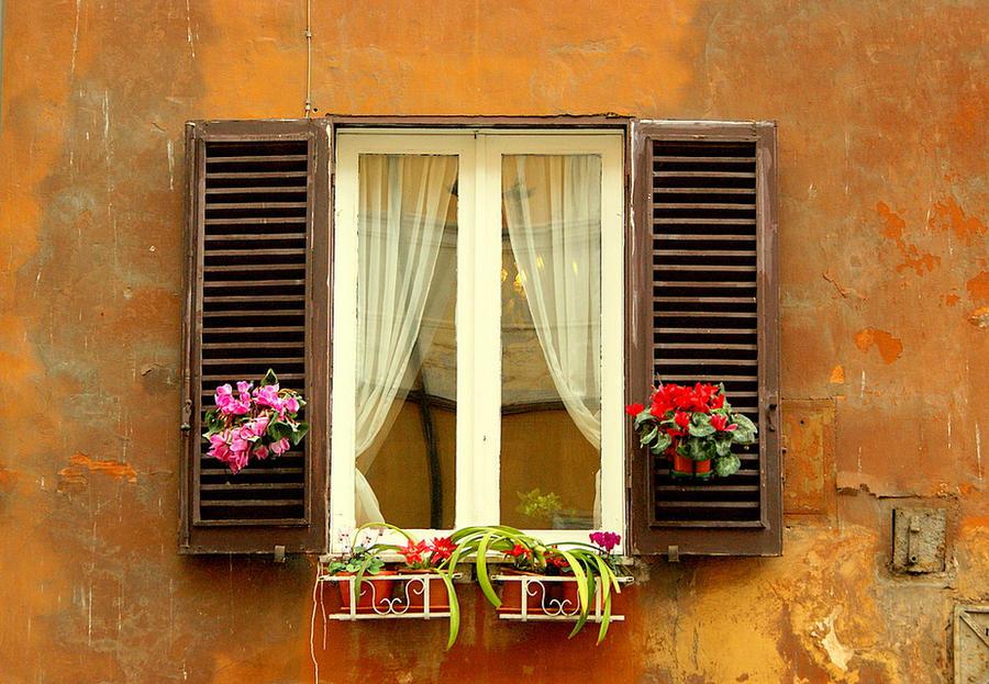 Prozori koji govore - Page 3 Roma_4_by_kimlik