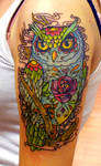 sam phillips owl