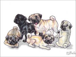 The Pug by Bafa