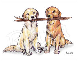 Two Dogs, One Stick by Bafa