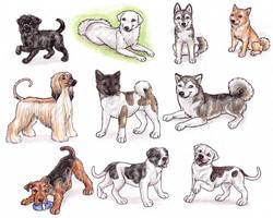 A - Dog Breeds -page 1- by Bafa