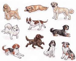 A - Dog Breeds -page 2- by Bafa