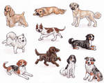 A - Dog Breeds -page 2-