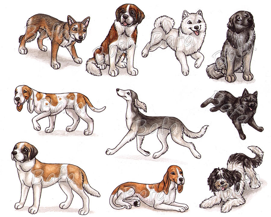 S - Dog Breeds -page 1- by Bafa