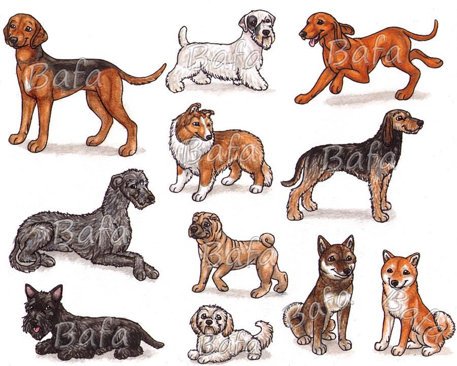 S - Dog Breeds -page 2- by Bafa
