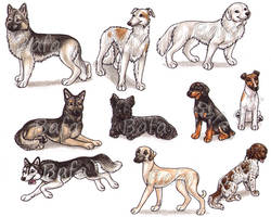 S - Dog Breeds -page 3- by Bafa