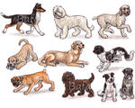 S - Dog Breeds -page 4-