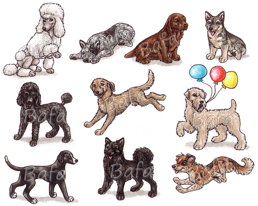 S dog breeds page 5 by bafa on deviantart for Different types of puppies breeds