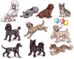 S - Dog Breeds -page 5-