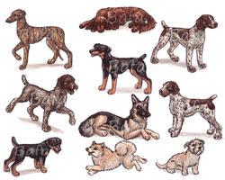 G - Dog Breeds -page 1- by Bafa