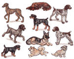 G - Dog Breeds -page 1-