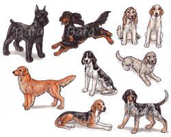 G - Dog Breeds -page 2- by Bafa