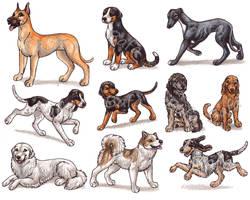 G - Dog Breeds -page 3- by Bafa